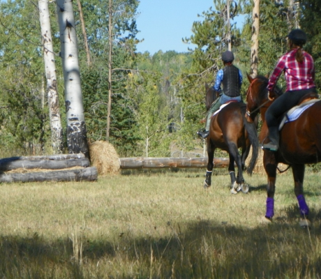 Equine Clinics at Flying Horse Ranch